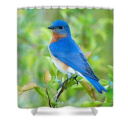 Bluebird Joy Shower Curtain