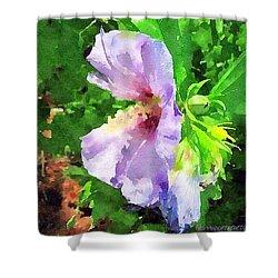 Bluebird Rose Of Sharon Shower Curtain by Anna Porter