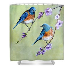 Shower Curtain featuring the painting Bluebirds And Blossoms by Debbie Hart