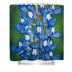 Bluebonnet Buffalo Clover Shower Curtain