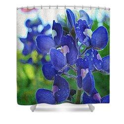 Bluebonnet Charmer Shower Curtain