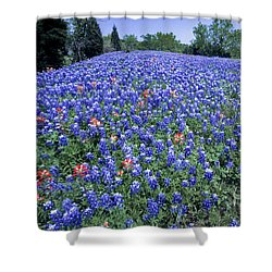 Bluebonnet Field Shower Curtain by David and Carol Kelly