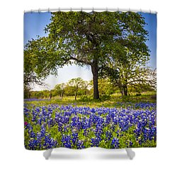 Bluebonnet Meadow Shower Curtain by Inge Johnsson