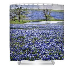 Bluebonnet Pond Shower Curtain by David and Carol Kelly