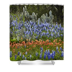 Shower Curtain featuring the photograph Bluebonnets Paintbrush And Prickly Pear by Tim Fitzharris