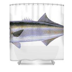 Bluefish Shower Curtain by Carey Chen