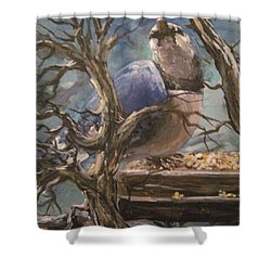 Shower Curtain featuring the painting Bluejay by Megan Walsh
