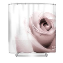 Blush Shower Curtain by Peggy Hughes