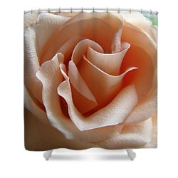 Blushing Rose Shower Curtain by Margie Amberge