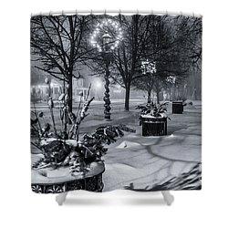 Blustery Winter Night Shower Curtain