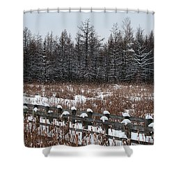 Shower Curtain featuring the photograph Boardwalk Series No1 by Bianca Nadeau