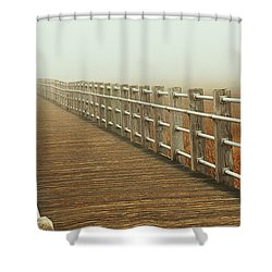 Boardwalk To The Unknown Shower Curtain by Karol Livote