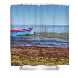 Boat At The Pond Shower Curtain