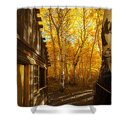 Boat House Among The Autumn Leaves  Shower Curtain by Jerry Cowart