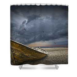 Boat With Gulls On The Beach With Oncoming Storm Shower Curtain