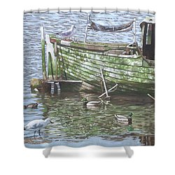 Boat Wreck With Sea Birds Shower Curtain by Martin Davey