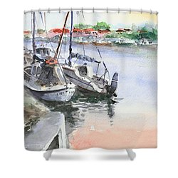 Shower Curtain featuring the painting Boats Inshore by Faruk Koksal