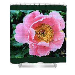 Bodacious Peony Shower Curtain