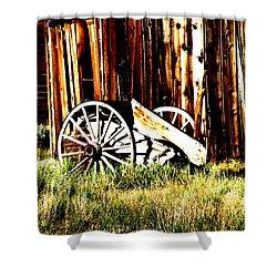 Bodie Wheel Shower Curtain