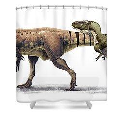 Body Size Comparison Shower Curtain by Roman Garcia Mora