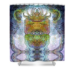 Shower Curtain featuring the digital art Bogomil Variation 15 by Otto Rapp