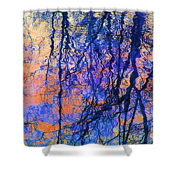 Bold Tree Reflections Shower Curtain