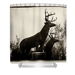 Boldt Castle Deer Shower Curtain