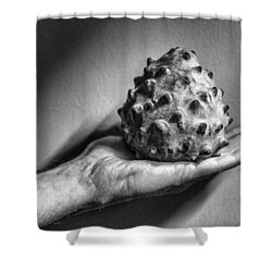 Bolivian Chirimoya Shower Curtain by For Ninety One Days