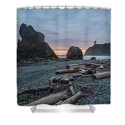 Bone Yard Shower Curtain