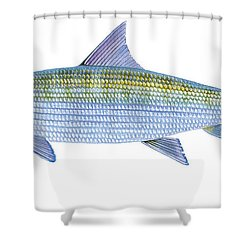 Bonefish Shower Curtain by Carey Chen