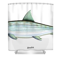 Bonefish Shower Curtain by Charles Harden