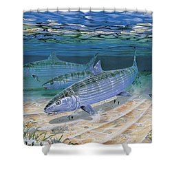 Bonefish Flats In002 Shower Curtain by Carey Chen