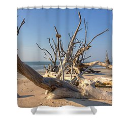 Boneyard Beach Shower Curtain