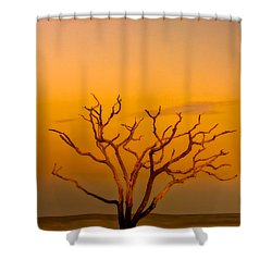 Boneyard Shower Curtain
