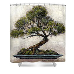 Bonsai Cedar Shower Curtain