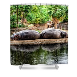 Book Ends Shower Curtain by Ray Warren