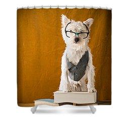 Bookish Dog Shower Curtain by Edward Fielding