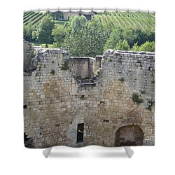 Bordeaux Castle Ruins With Vineyard Shower Curtain