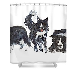 Border Patrol Shower Curtain by Kathleen McElwaine