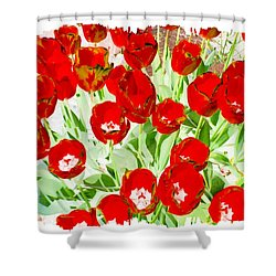 Bordered Red Tulips Shower Curtain by Will Borden