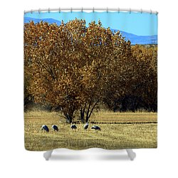 Bosque Del Apache Landscape No. 1 Shower Curtain