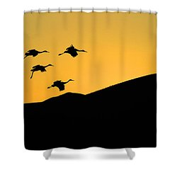 Bosque Del Apache Last Light Shower Curtain by Bob Christopher