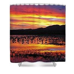 Bosque Sunset II Shower Curtain by Steven Ralser