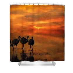 Bosque Sunset Shower Curtain by Priscilla Burgers