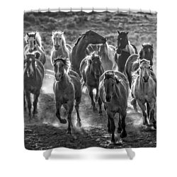 Boss Hoss Shower Curtain