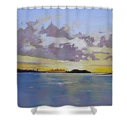 Boston A Glow Two Shower Curtain