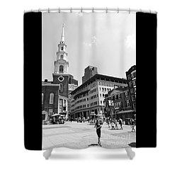 Boston Common Scene Shower Curtain