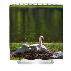 Boston's Romeo And Juliet Swans Shower Curtain by Joann Vitali
