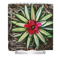 Botanical Flower Shower Curtain by Tom Janca