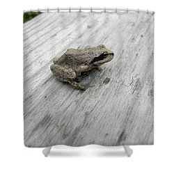 Shower Curtain featuring the photograph Botanical Gardens Tree Frog by Cheryl Hoyle
